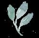 detail-leaf-green.png